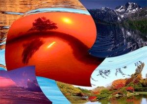 Nature's Kaleidoscope Photocollage